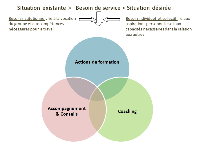 Actions de formation/Coaching/Codéveloppement